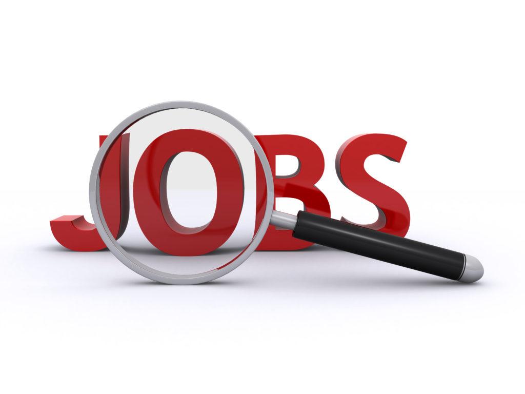 Jobchancen für Absolventen, Young Professionals & Professionals!